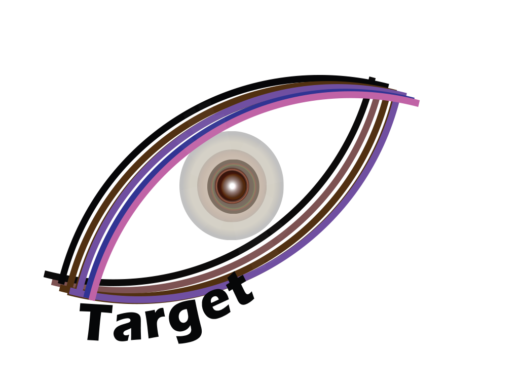 Visualtarget Jobs