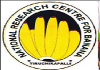 ICAR-National Research Center for Banana (NRCB)