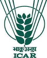 Directorate of Maize Research Jobs