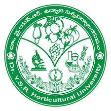 Dr YSR Horticultural University Jobs