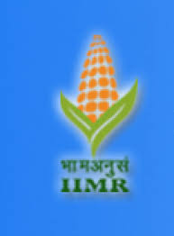 Indian Institute of Maize Research
