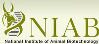 National Institute of Animal Biotechnology Jobs