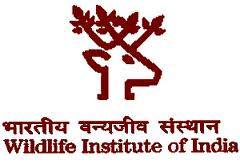 Wild Life Institute of India Jobs